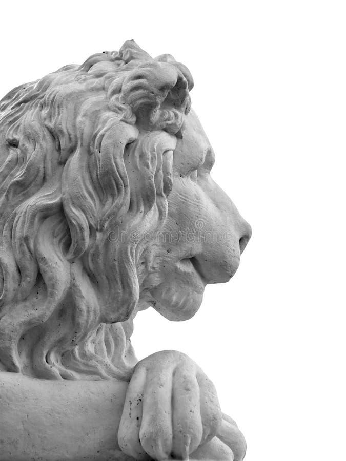 Marmeren geïsoleerde leeuwhoofd stock afbeelding