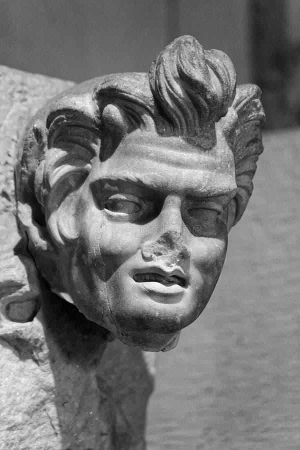 Marmeren Hoofd van een Mens met Zwabber van Haar royalty-vrije stock foto's