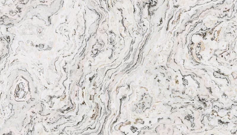 Marmo riccio bianco illustrazione di stock
