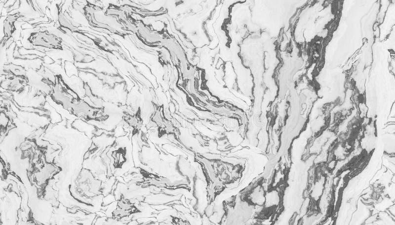 Marmo riccio bianco illustrazione vettoriale
