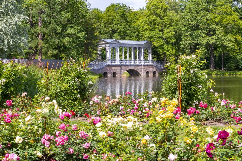 Marmorbr?cke und Blumen in Catherine parken, Tsarskoe Selo, St Petersburg, Russland stockbild