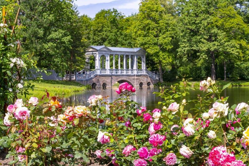 Marmorbron och blommor i Catherine parkerar, Tsarskoe Selo, St Petersburg, Ryssland royaltyfria bilder