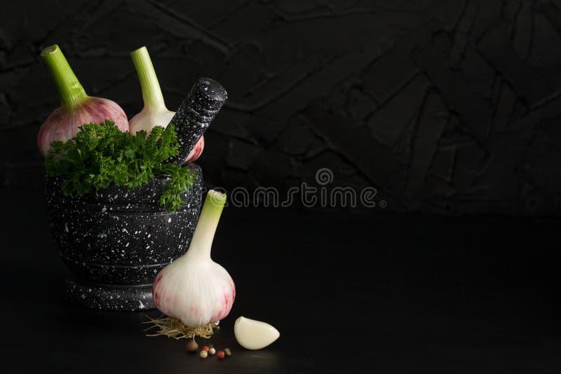 Marmorera mortel och mortelstötar med örter vitlök och peppar royaltyfri bild