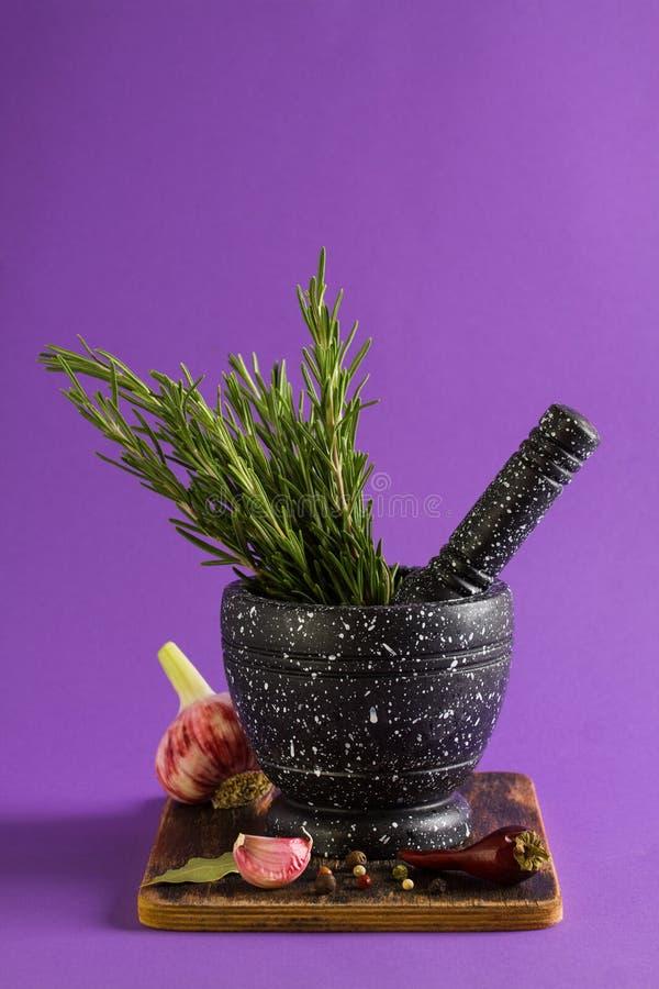Marmorera mortel och mortelstötar med rosmarinvitlök och peppar royaltyfri fotografi