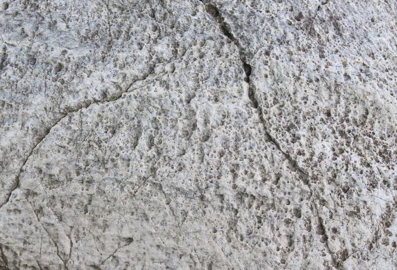 Marmorera textur, stenberg i naturbakgrund royaltyfri foto