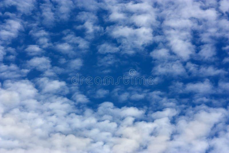 Marmorerade molnformer i en intensiv blå himmel royaltyfri fotografi