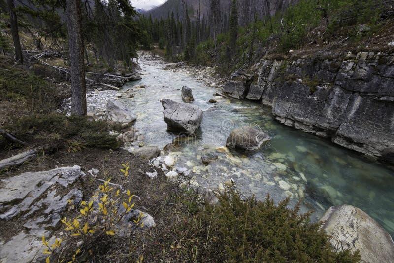 Marmorschlucht, Nationalpark Kootenay stockfotografie