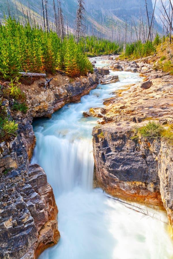 Marmorschlucht in Nationalpark Kootenay nahe Banff in Kanada stockbild