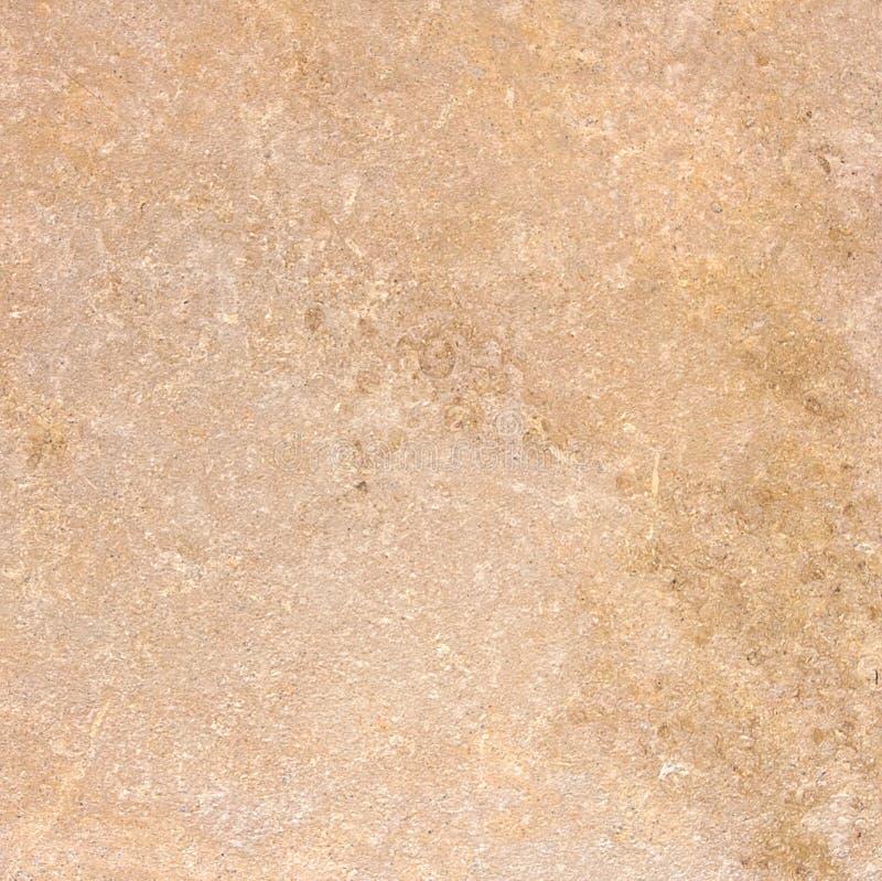 marmortexturtravertine arkivfoton