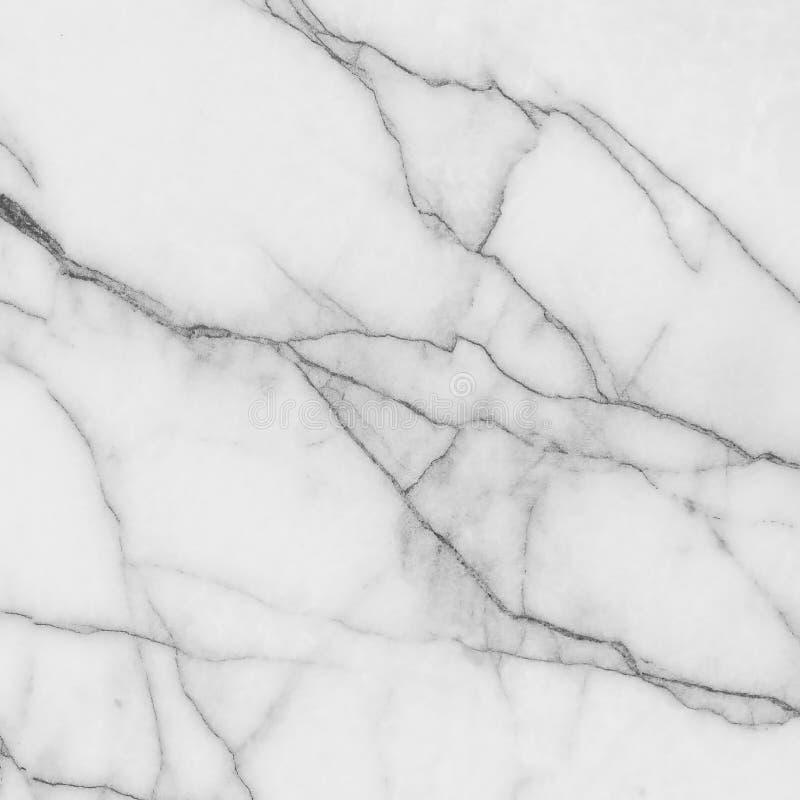 marmortexturwhite royaltyfria foton