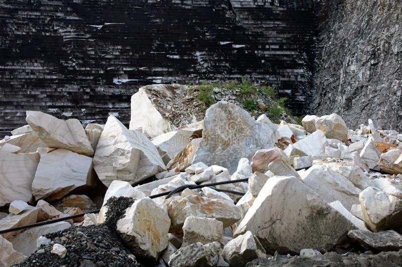 marmorvillebrådromania white arkivbild