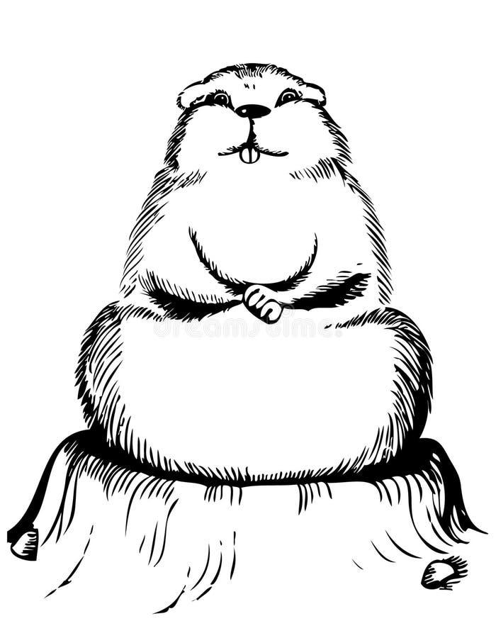 Marmot.Animal illustrazione di stock