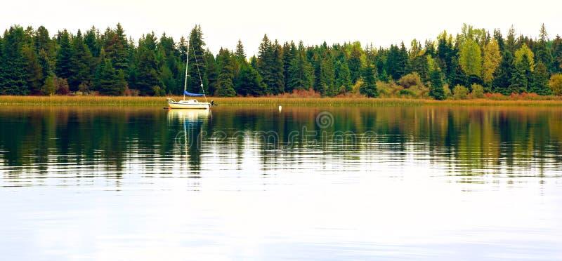 Marmota Canadá del lago fotografía de archivo