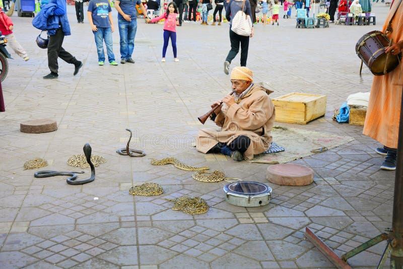 Maroc,马拉喀什,耍蛇者 库存照片