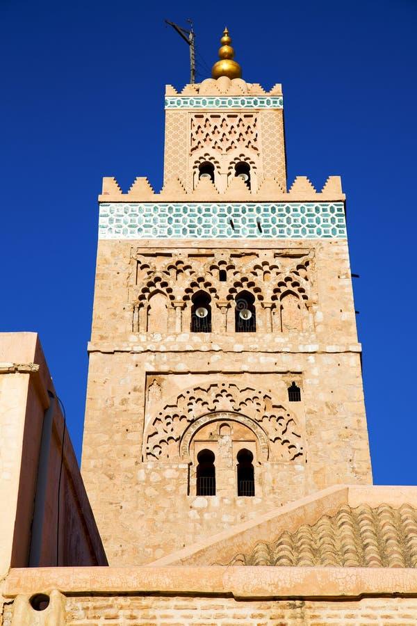 maroc africa blåtten arkivbilder
