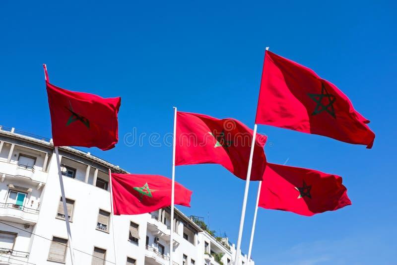Marockanska flaggor mot en blå himmel i Marocko arkivbilder