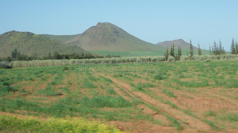 Maroco am Sommer lizenzfreie stockbilder