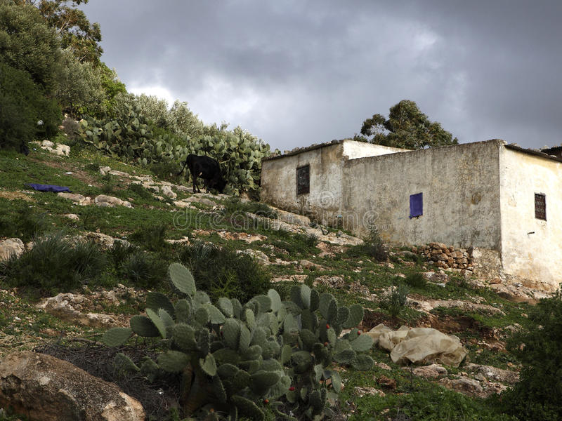 Marokańczyków domy w Ifrane zdjęcie royalty free