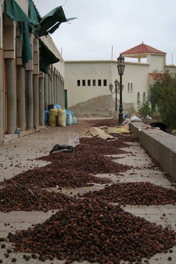 Marokkaans dorp royalty-vrije stock afbeeldingen