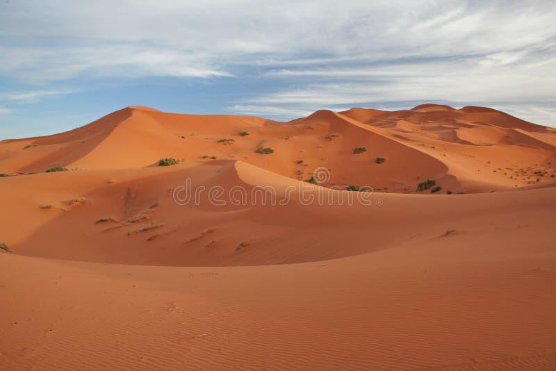 Marokkaans woestijnlandschap met blauwe hemel stock afbeeldingen