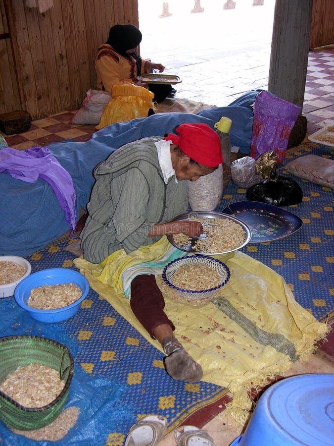 Marokkanische Frau, die an den Argannüssen arbeitet lizenzfreie stockfotografie