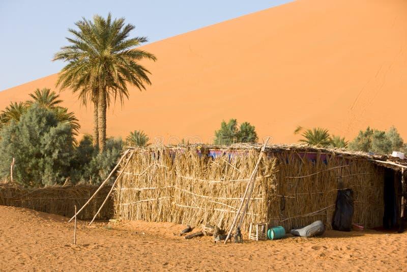 marokko obrazy royalty free