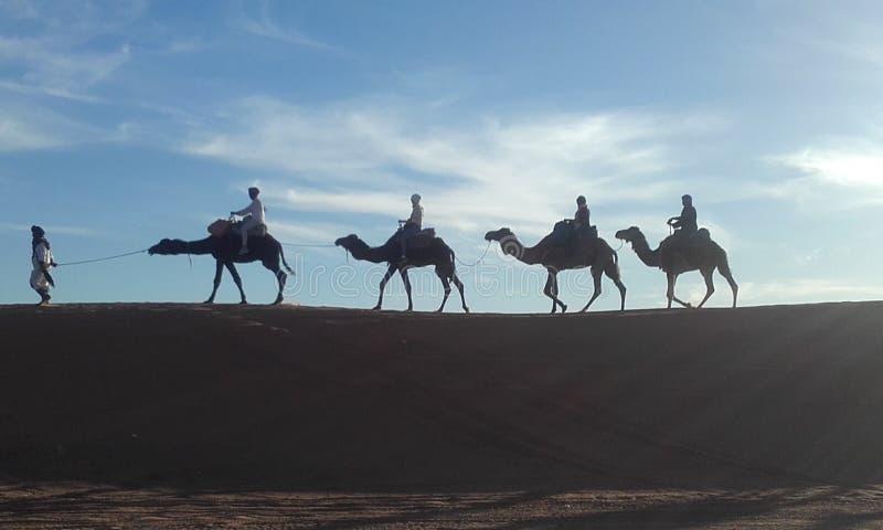 marokko stockfotografie