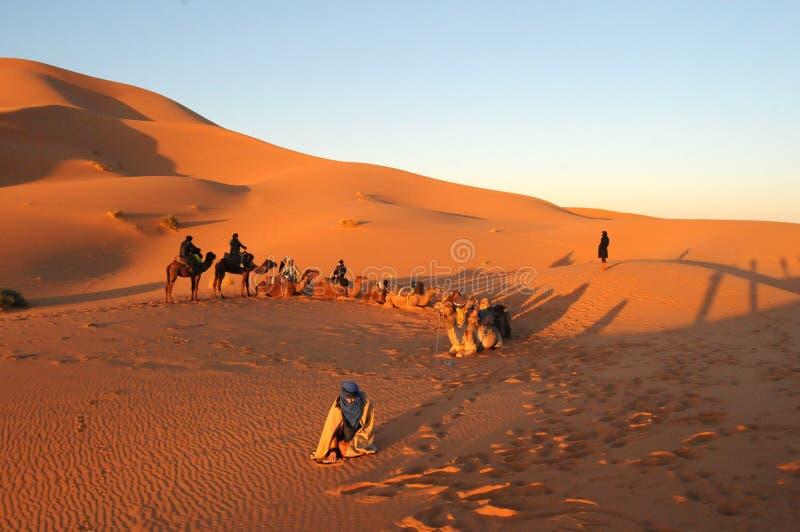 Marokko, Afrika stockbild