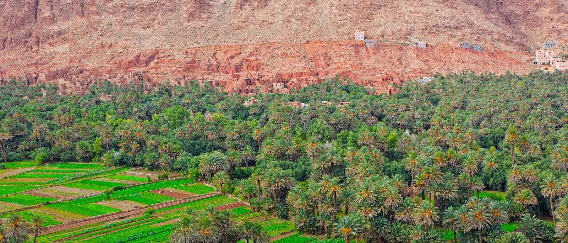 Marokko, duizend gebied Kasbahs royalty-vrije stock fotografie
