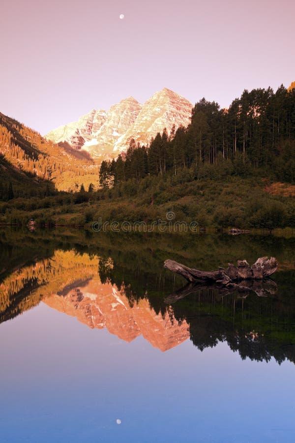 Maroon колоколы - восход солнца в горах стоковые изображения
