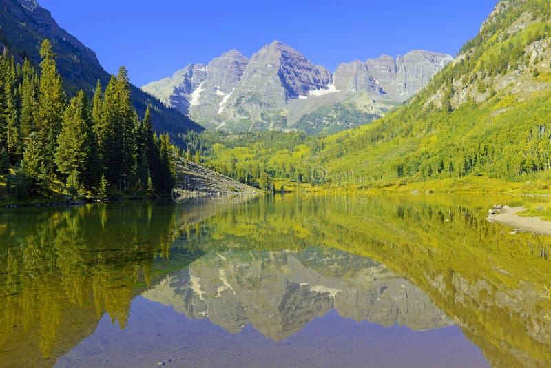 Maroon колоколы, ряд лося, скалистые горы, Колорадо стоковое изображение