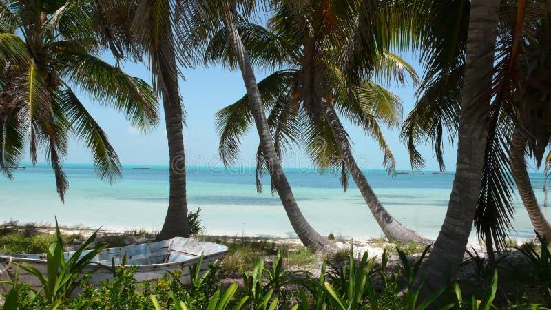 Marooned på en karibisk strand royaltyfria foton