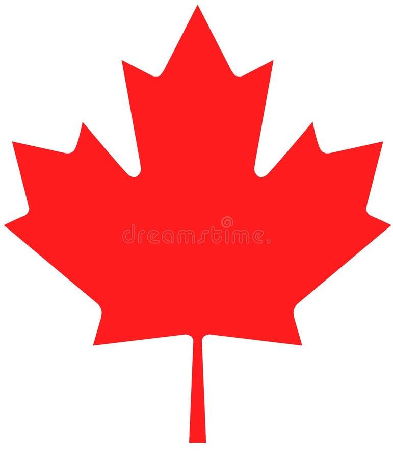 Marple liścia symbol ilustracji