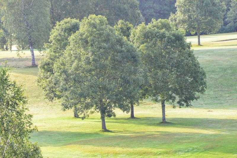 Marque al club de golf del ` s en el kinna Suecia imagen de archivo