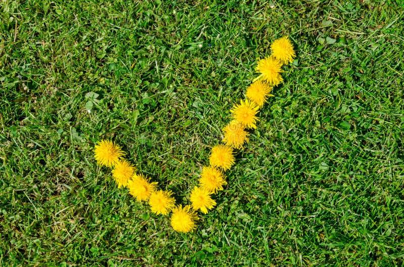 Marque de coutil faite de fleurs jaunes sur le pré vert images stock