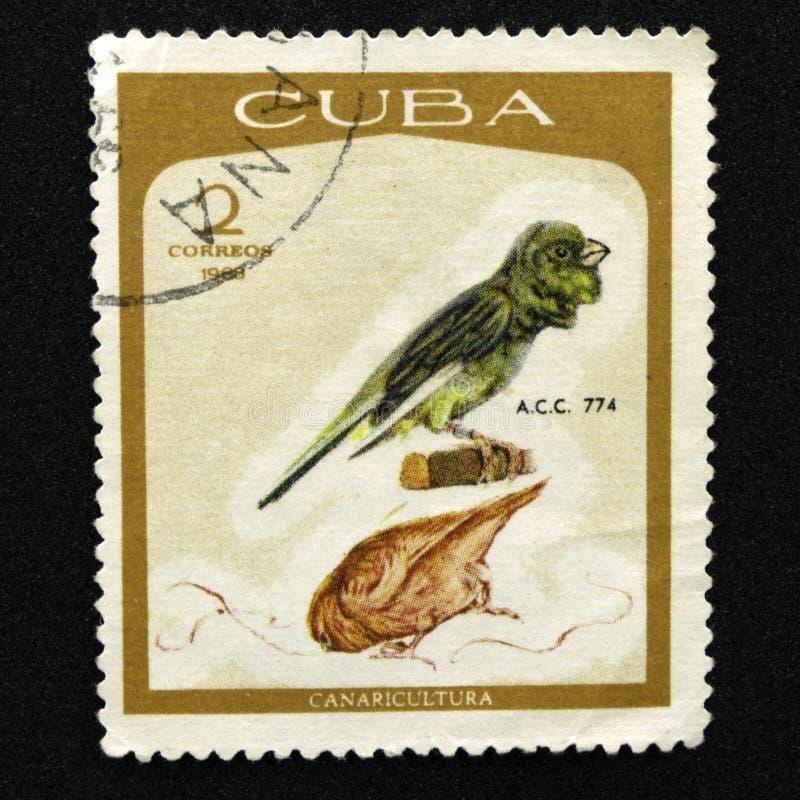 Marque du courrier cubain photo libre de droits