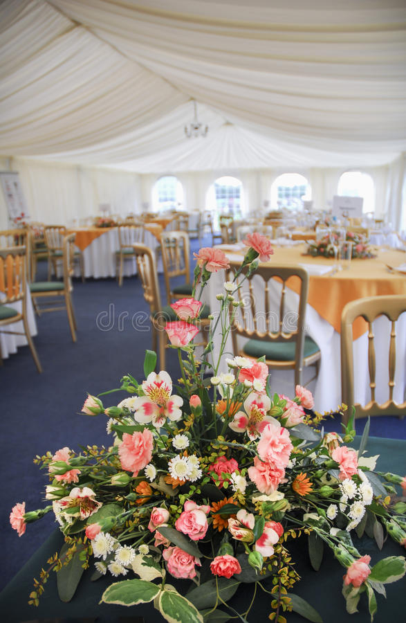 Download Marquee Flowers Stock Images - Image: 34813194