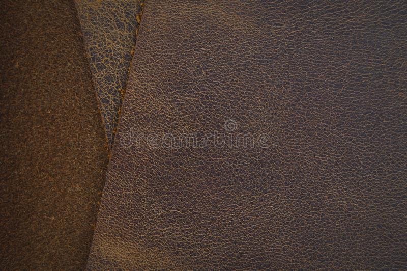 Marrón del clarete y zurriago beige, de cuero Armadura, primer fotos de archivo libres de regalías