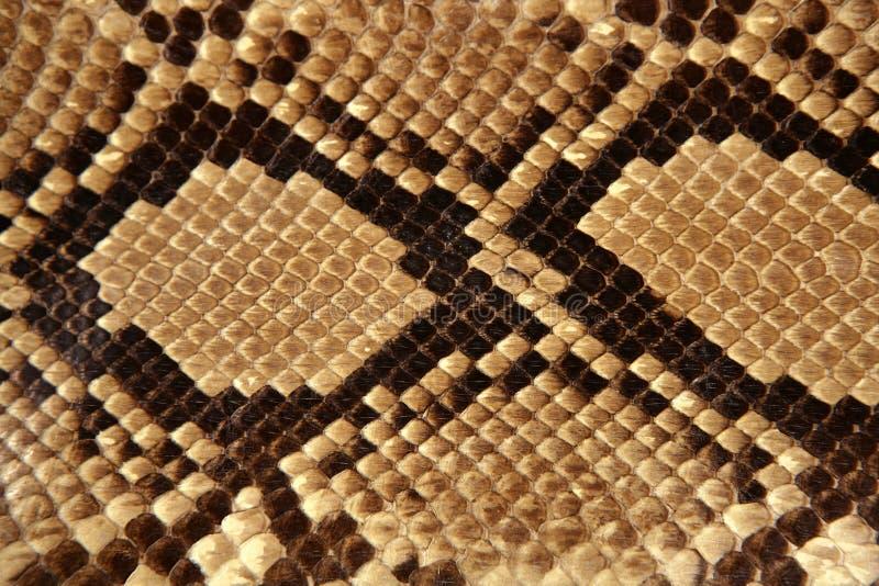 Marrón del modelo de la piel de serpiente del fondo imágenes de archivo libres de regalías