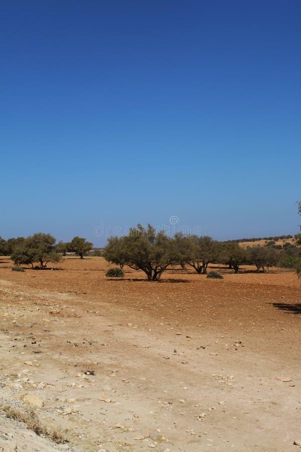 Marrakech naturlandskap i Marocko, Afrika Öken och berg Lopp Marocko wanderlust arkivfoto