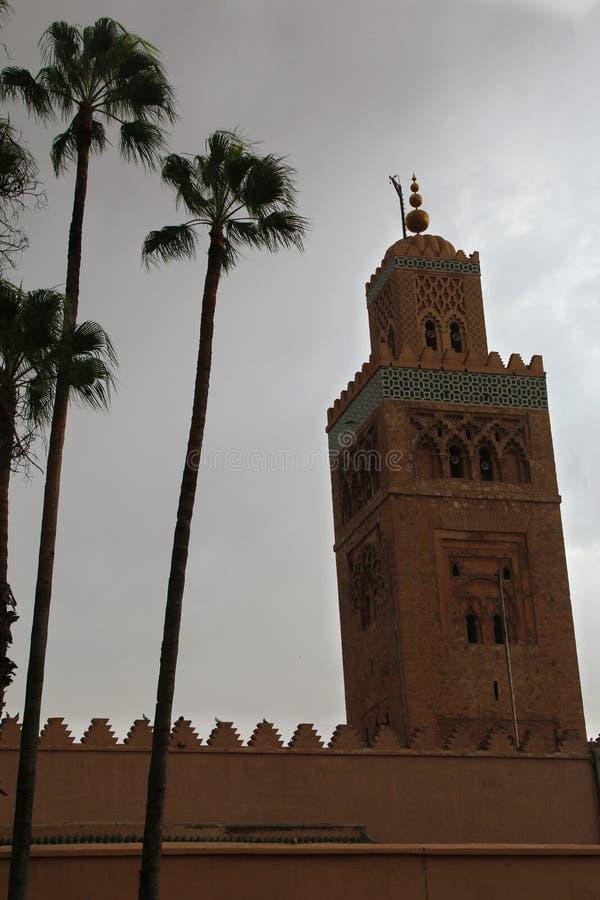Marrakech naturlandskap i Marocko, Afrika Öken och berg Lopp Marocko wanderlust royaltyfria foton