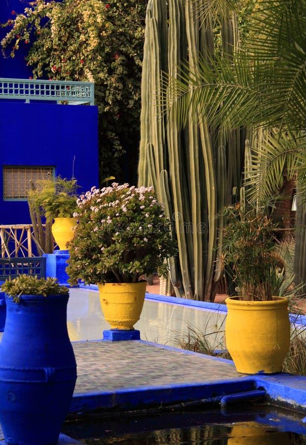 Marrakesch, Majorelle Gärten stockbild