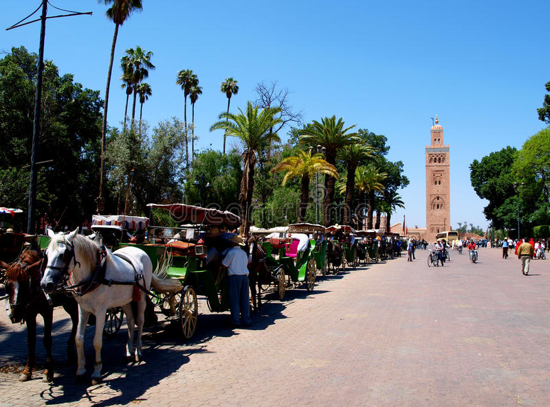 Marrakesh stock images