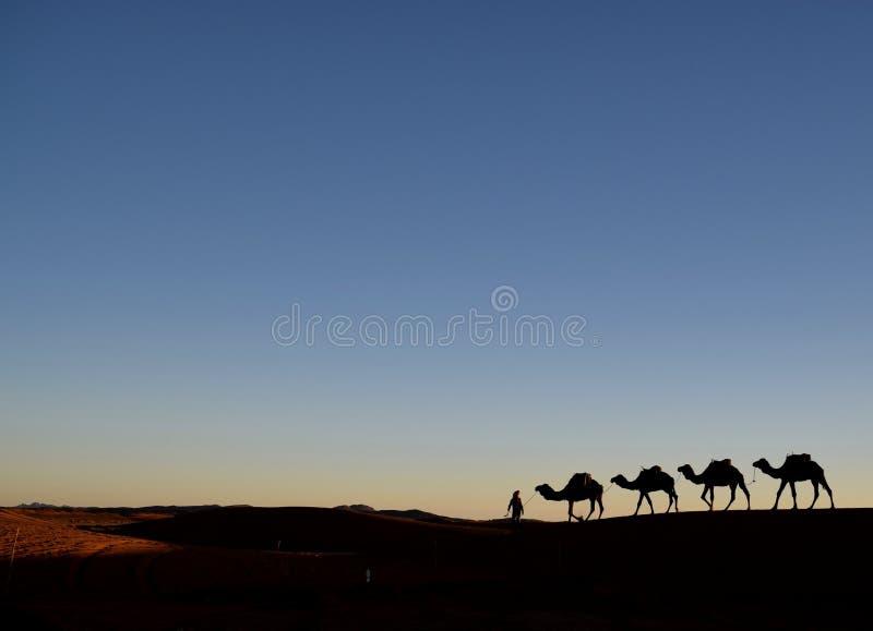 Marrakesh expresa imagenes de archivo