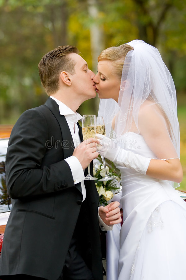 Download Marriage stock image. Image of family, kiss, people, married - 6942997