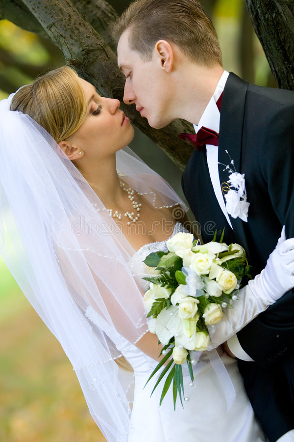 Download Marriage stock image. Image of happy, bride, bouquet, lady - 8978141