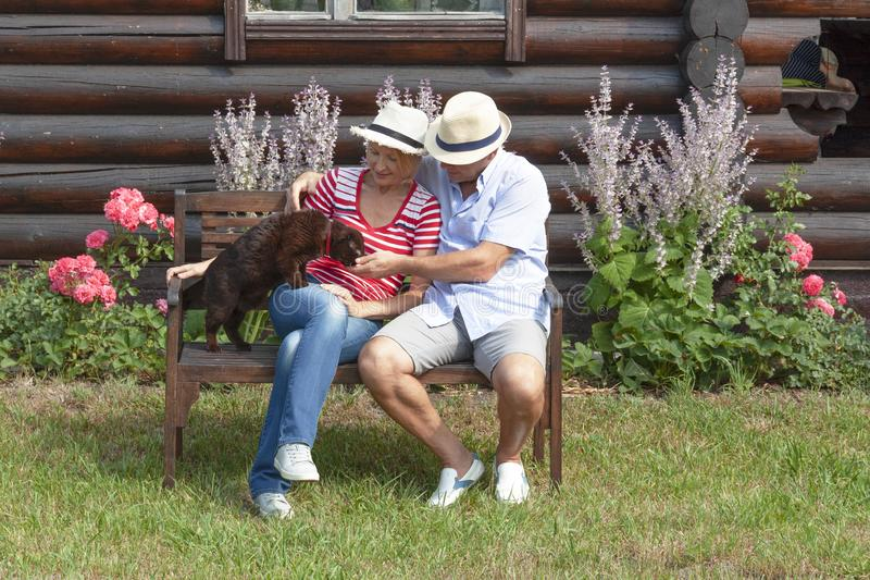 Married couple with his cat sitting on a bench stock image