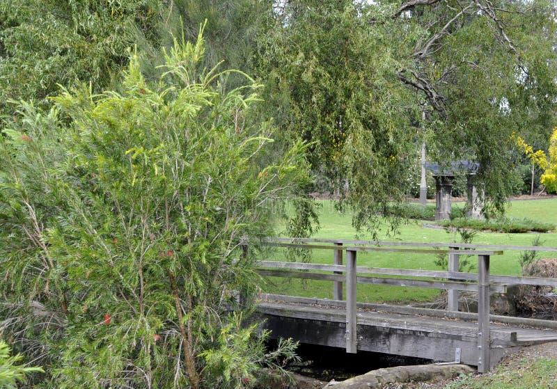 Marriott Park, Nowra. Footbridge at the Marriott public park in Nowra Australia royalty free stock image