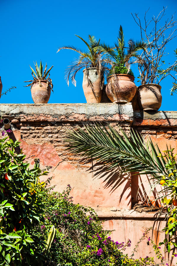 Marrocan walll decorated with plants royalty free stock photo
