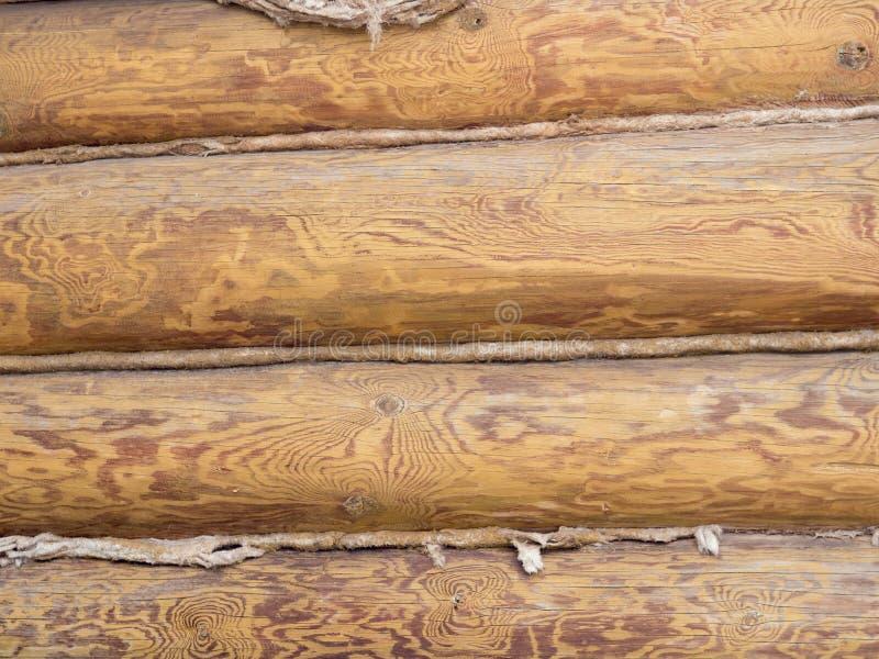 Marrom de madeira do fundo da textura, natural fotografia de stock